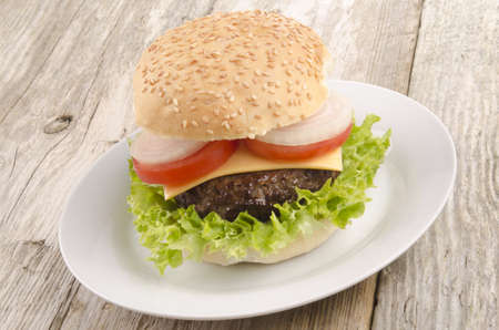 home made hamburger on a white plate photo