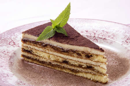 tiramisu on a plate with mint and cocoa powder photo