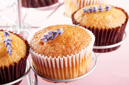 vanilla cupcake: home made vanilla cupcake with lavender Stock Photo