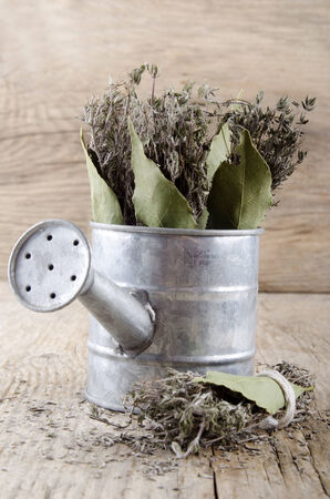 bay leaf: dried thyme covenant and bay leaf in a watering can