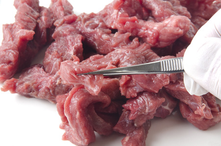 examined: beef stripes is examined in a food laboratory
