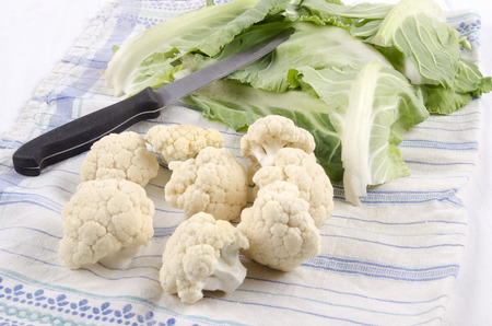 prepared: prepared cauliflower with a kitchen knife on a kitchen towel