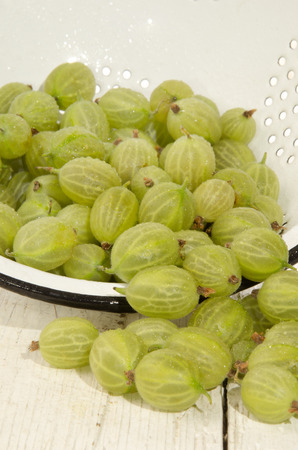 cleaned: cleaned wet gooseberries in a blue and white colander