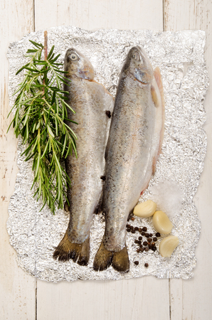 aluminum foil: trout on aluminum foil with rosemary, salt, pepper corn and garlic Stock Photo