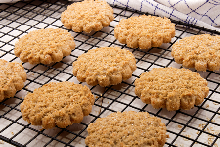 typically: freshly baked typically scottish oatmeal biscuit on a cooling rack