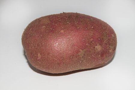 one organic potato with a red skin on a bright background