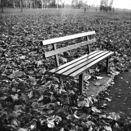 The empty bench in autumn - This black and white photo is NOT sharp due to camera characteristic. Taken on film with a medium format camera Standard-Bild