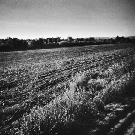 Field is prepared in the spring - This black and white photo is NOT sharp due to camera characteristic. Taken on film with a medium format camera Standard-Bild
