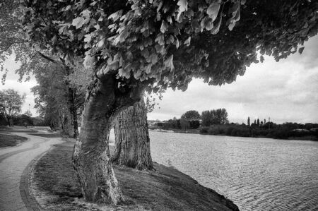 some trees and a large quiet river, this black and white photo was taken with a pinhole film camera, which corresponds to the camera characteristic Standard-Bild