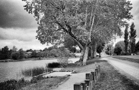 sunny day on the river with trees, this black and white photo was taken with a pinhole film camera, which corresponds to the camera characteristic