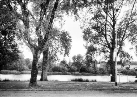 three trees in summer on a river, this black and white photo was taken with a pinhole film camera, which corresponds to the camera characteristic Standard-Bild