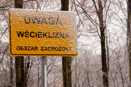 rabies: Szczecin, Poland - March 31, 2015: Warning sign for Rabies crossing on Polish forest Editorial