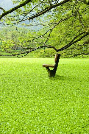 Single chair on green field Stock Photo