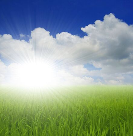 green grass and sky Stock Photo - 2840462
