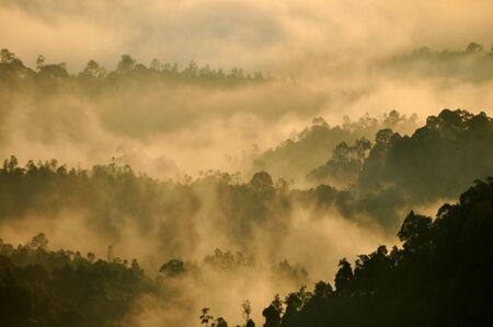 Morning Mist at Tropical Mountain Range, Malaysia photo