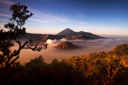 Mount Bromo volcanoes taken in Tengger Caldera, East Java, Indonesia.  photo