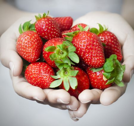 Many strawberries on hand, focus on strawberry. photo