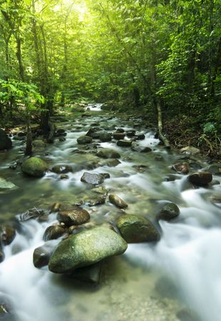 Tropical moutain stream with sunbeam in a morning. photo