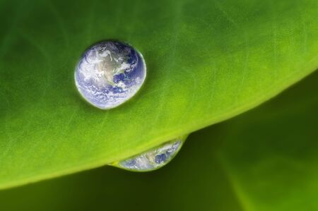 Planet earth waterdrop on lotus leaf. Earth picture credit to: http:visibleearth.nasa.gov photo