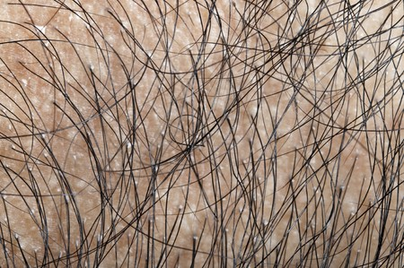 Close up on human hair photo