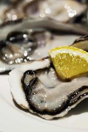 Close up on fresh oysters with lemon slide Stock Photo - 7284763