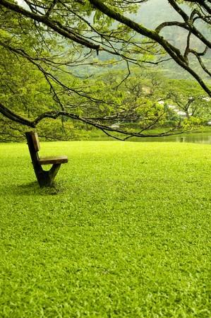 Landscape of single chair beside lake garden Stock Photo