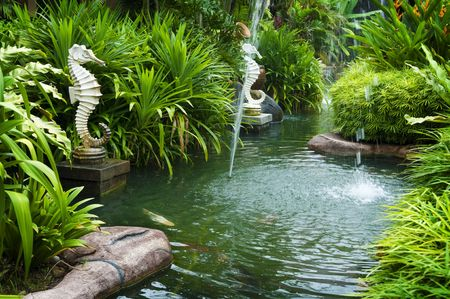seahorse: Tropical zen garden view with fountain and green plants.
