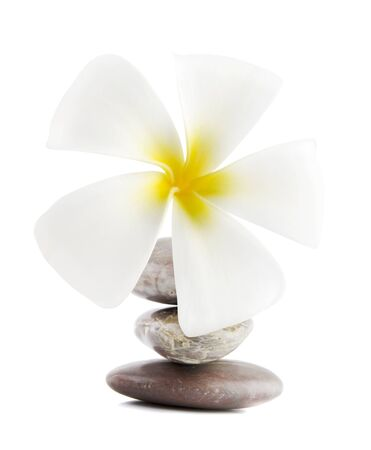 White frangipani and therapy stones on white background photo