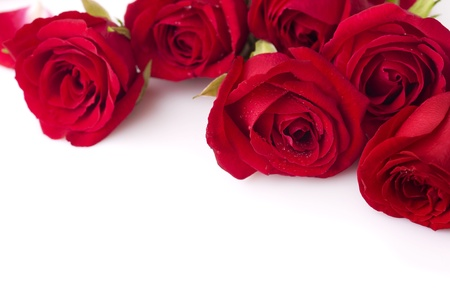 Bouquet of Valentine Roses on White, Copy Space photo