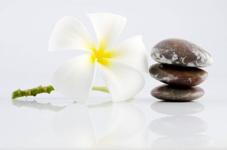White frangipani and therapy stones on grey background photo
