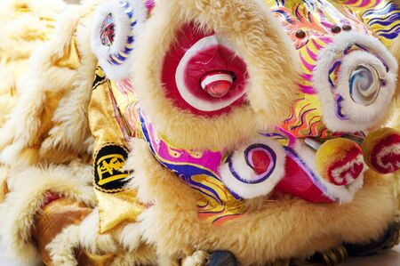 new year dance: Close up on Chinese New Year Lion Dance