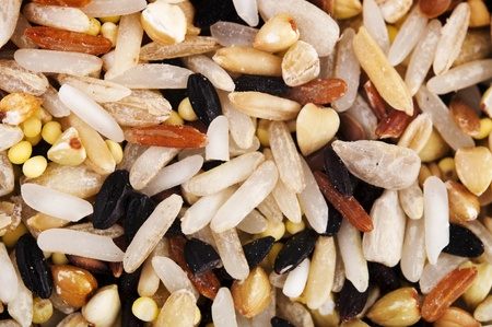 Raw grains background, mixed with 12 different grains photo