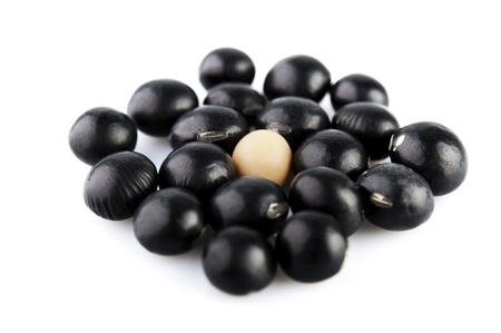 A single soy bean among black beans Stock Photo - 9604716