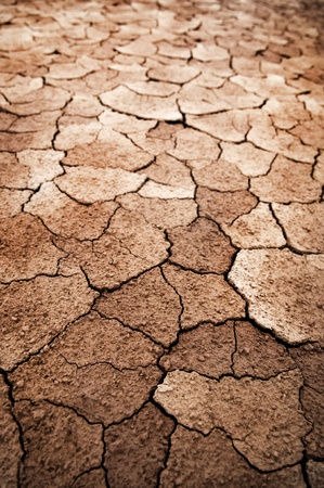 Detail of dry cracked earth photo