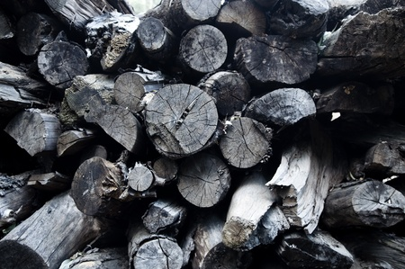 Stacked and cut logs for firewood, India. photo