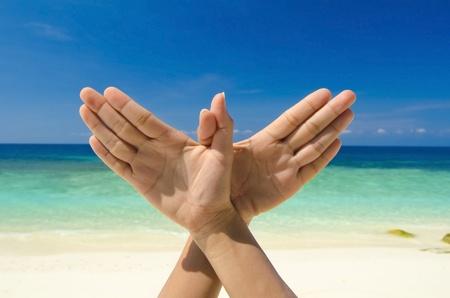 palomas volando: Gesto con la mano conceptual de Paloma, el concepto de paz mundial. Mano original posando en la playa.
