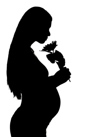 Silhouette of a pregnant woman on white background photo