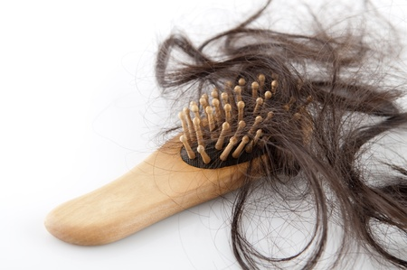 Close-up of a brush with lost hair on it, on white background photo