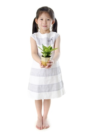 hand holding plant: Concept of little girl holding a plant on white background