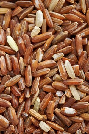 unpolished: Close up unpolished red rice, product of Kelantan, Malaysia,Asia Stock Photo