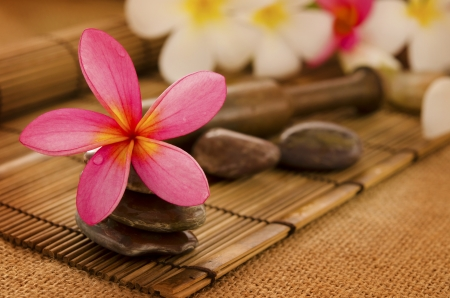 bali massage: Tropical spa with Frangipani flowers. Low lighting, suitable for spa related theme.