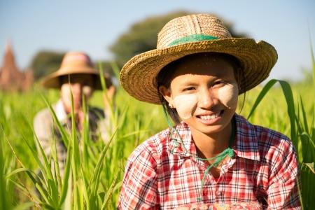campesino: Retrato de una mujer birmana con thanaka cara en polvo que trabaja en la granja