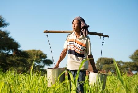 Portrait of a Burmese farmer watering plant photo