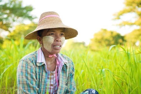 Portrait of a Myanmar woman with thanaka powdered face who works in the field photo
