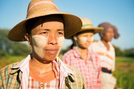 Myanmar farmer standing in row and looking away photo