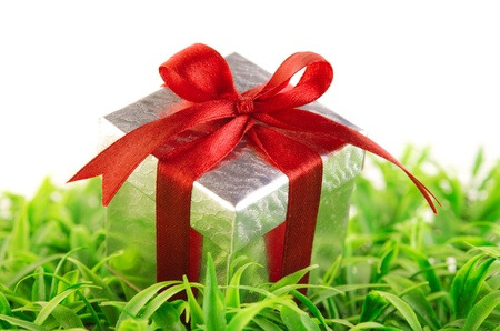 Silver gift box on green grass background photo