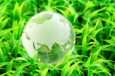 environmental protection: Environment concept, glass globe in the grass Stock Photo
