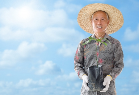 asian gardening: Asian Chinese farmer holding a young plant under hot summer sun Stock Photo
