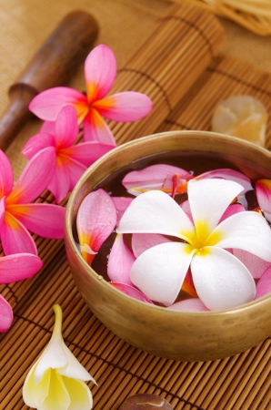 pink plumeria: Spa setting, low light with ambient. Frangipani, hot and cold stone on bamboo mat.