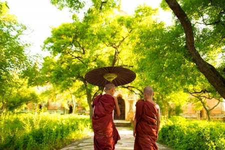 Two little Buddhist monks walking outdoors under shade of green tree, rear view, outside monastery, Myanmar. photo